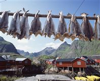 Lofoten islands Photo Frithjof Fure/Innovation Norway