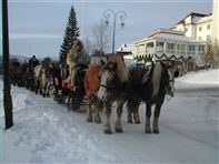 Horse Sleigh ride. Photo Dr Holms Hotel